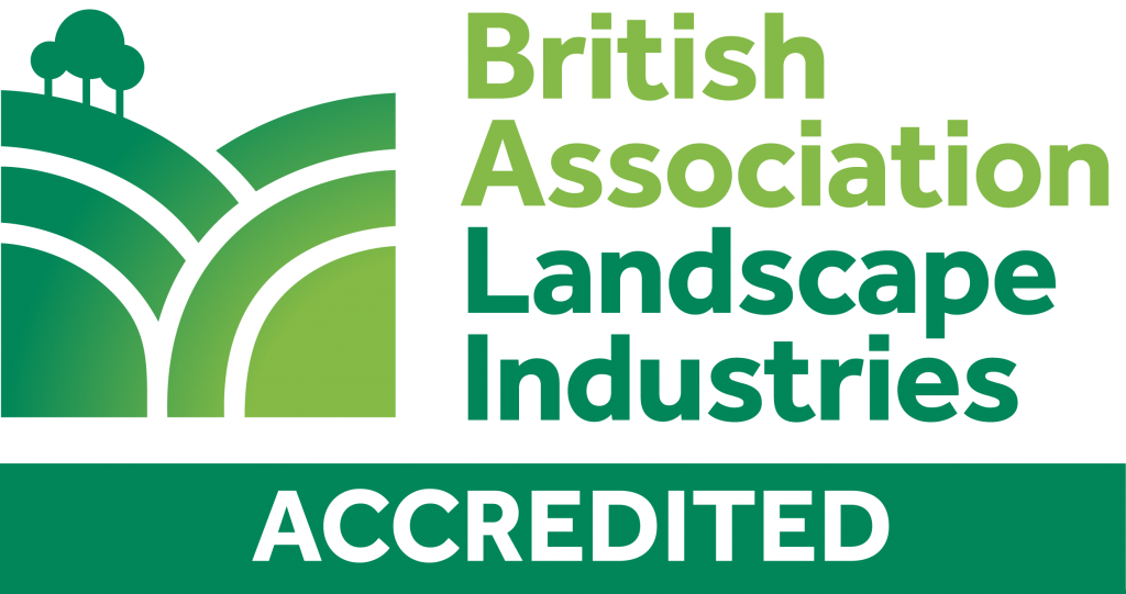 BALI Accredited primary logo