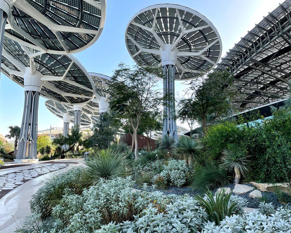 Desert Landscape Institutional Design