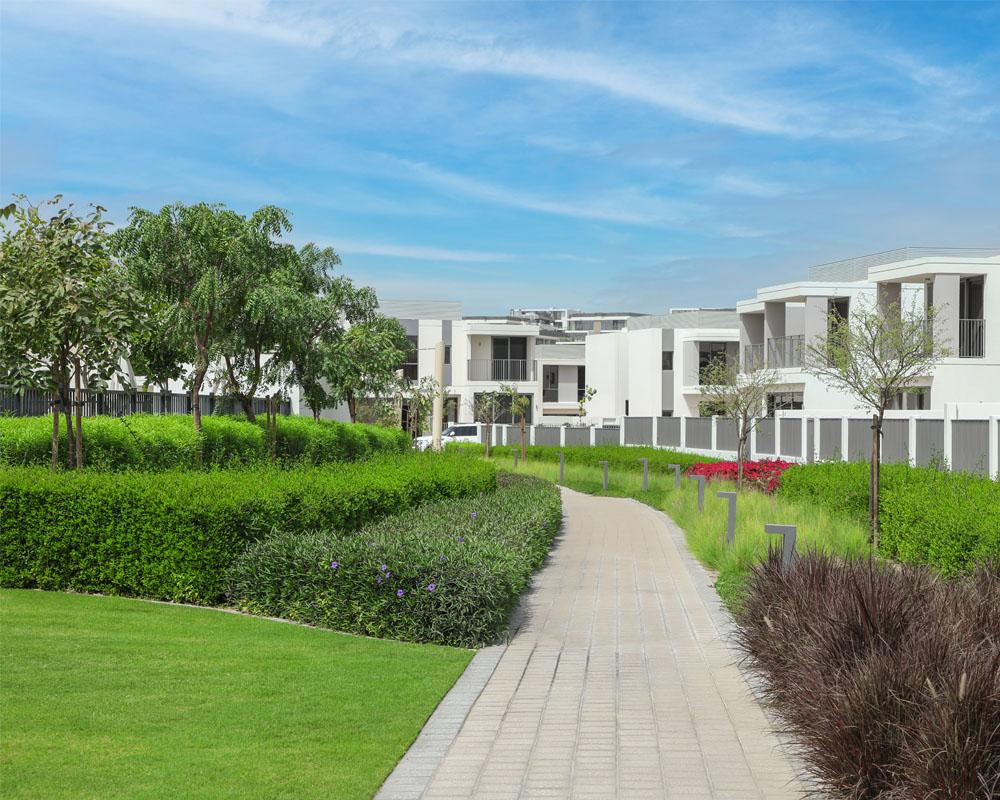 Gated Community Landscape by Desert Landscape