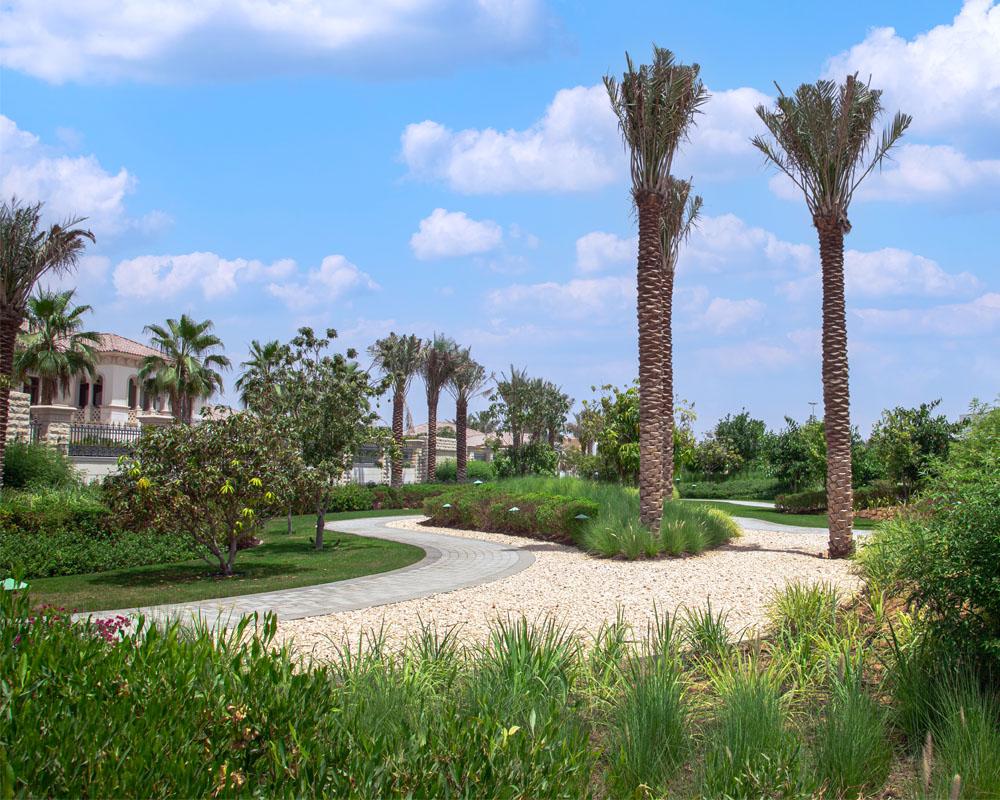 Soft Landscaping by Desert Landscape