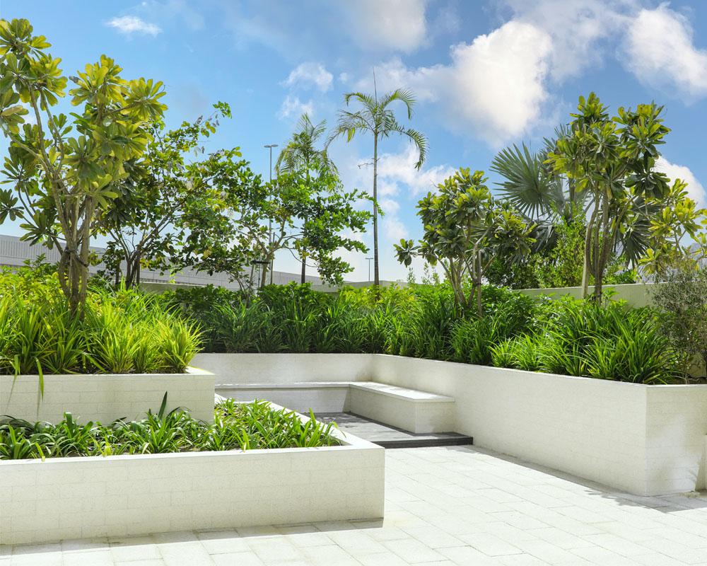 banyan-tree-project